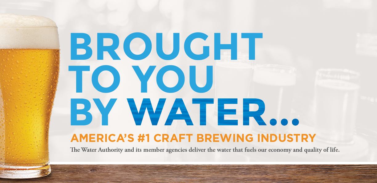B2UbyH2O Craft Beer Graphic